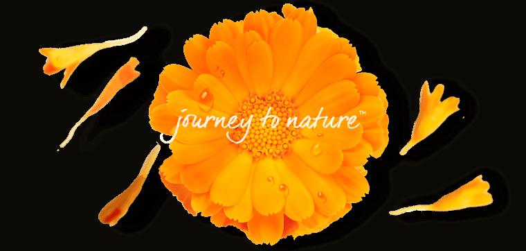 Nature Republic là thương hiệu mỹ phẩm của Hàn Quốc. Thành lập vào tháng 3 năm 2009, Nature Republic là thương hiệu mỹ phẩm với các sản phẩm sử dụng thành phần từ tự nhiên. Tìm kiếm, nghiên cứu, và khai phá các khả năng đặc biệt từ các dạng sống tự nhiên, đưa vào các sản phẩm chăm sóc sức khỏe con người.