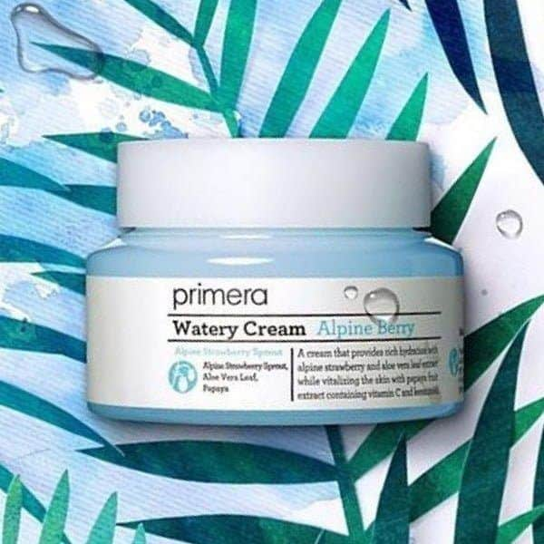 Primera-Alpine-Berry-Watery-Cream